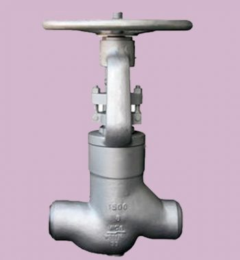 Duplex-Steel-Pressure-Seal-Valves