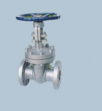 Nickel-Alloy-N02201-Gate-Valves