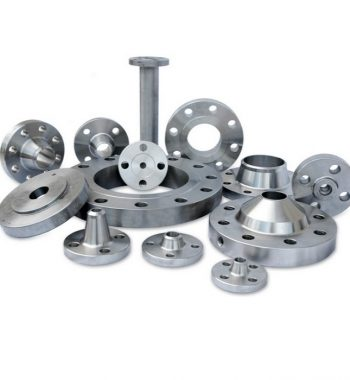 Hastelloy-Alloy-Flanges